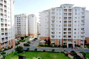 Real Estate - Builders, Consultants & Agents B2C